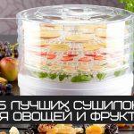 15 лучших сушилок для овощей и фруктов